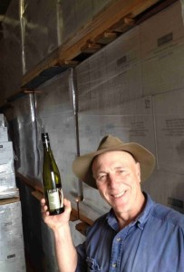 Hahndorf Hill Gruner in storage