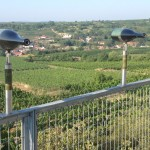 Wine Walk Langenlois - wine bottle telescopes